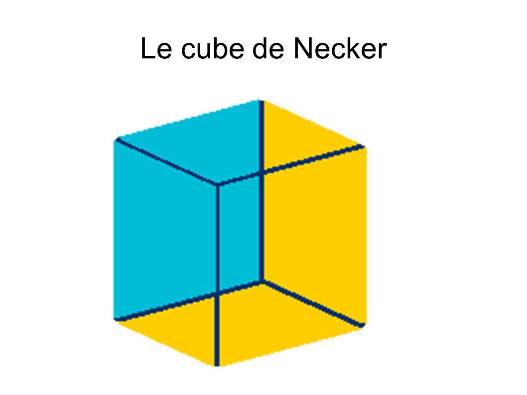 Le cube de Necker bleu au front