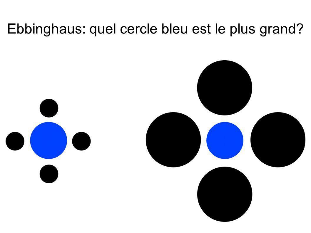 Ebbinghaus: quel cercle bleu est le plus grand
