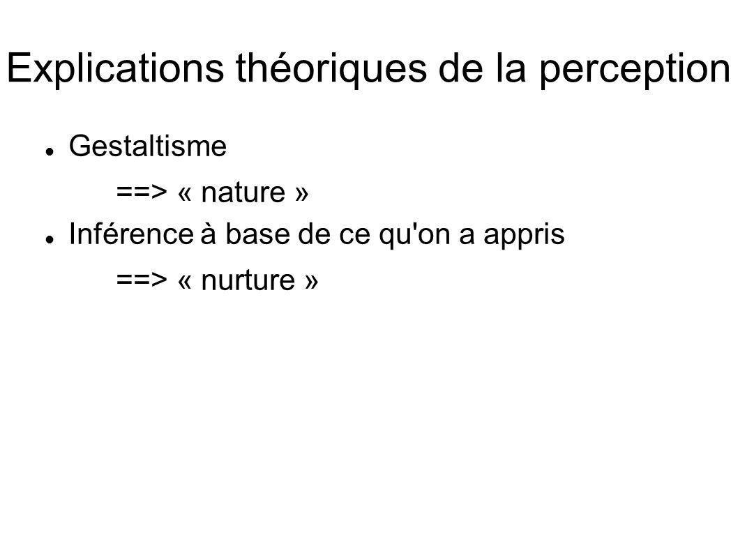Explications théoriques de la perception