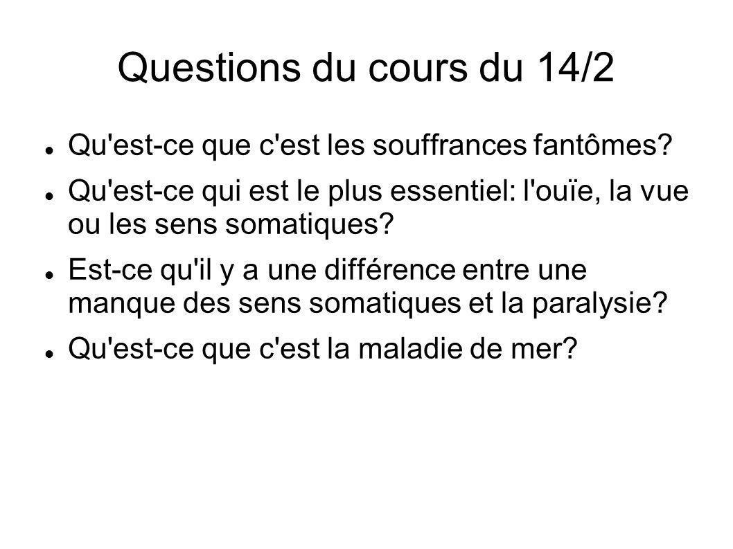 Questions du cours du 14/2 Qu est-ce que c est les souffrances fantômes