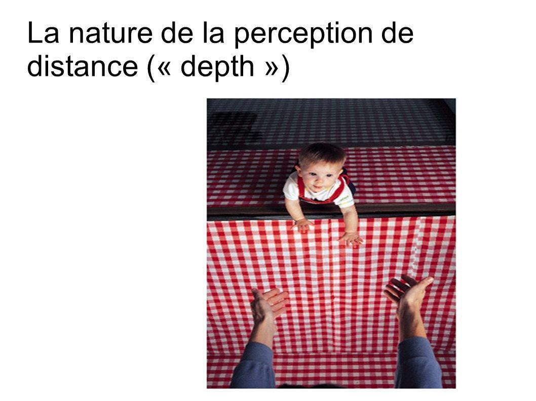 La nature de la perception de distance (« depth »)