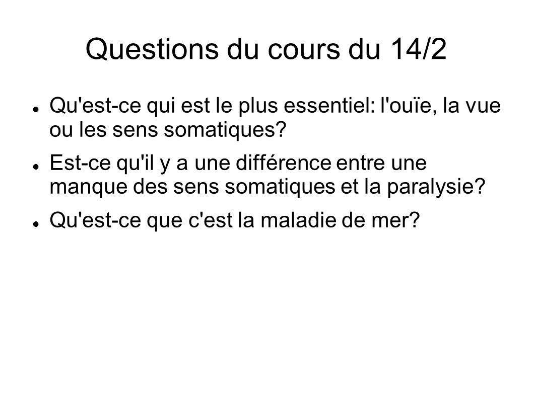 Questions du cours du 14/2 Qu est-ce qui est le plus essentiel: l ouïe, la vue ou les sens somatiques