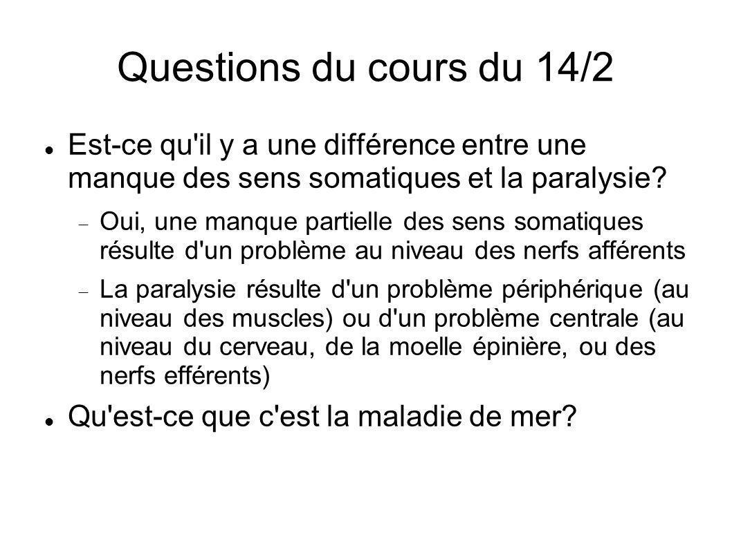 Questions du cours du 14/2 Est-ce qu il y a une différence entre une manque des sens somatiques et la paralysie