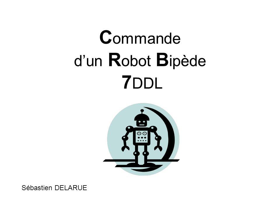 Commande d'un Robot Bipède 7DDL