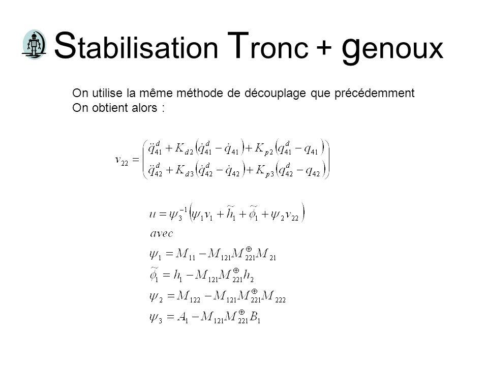 Stabilisation Tronc + genoux