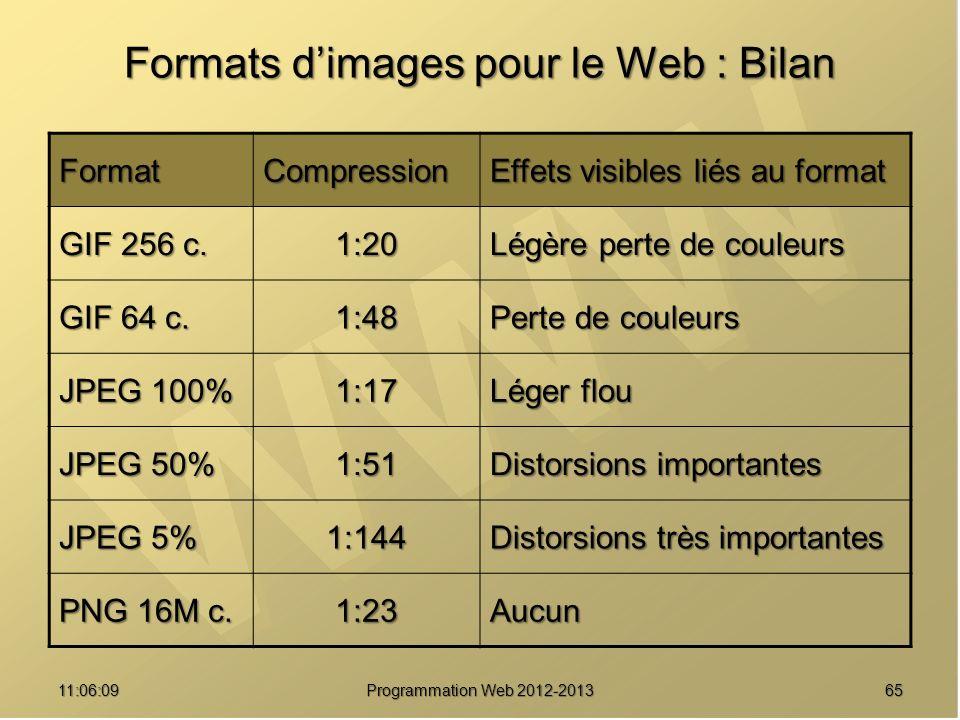 Formats d'images pour le Web : Bilan