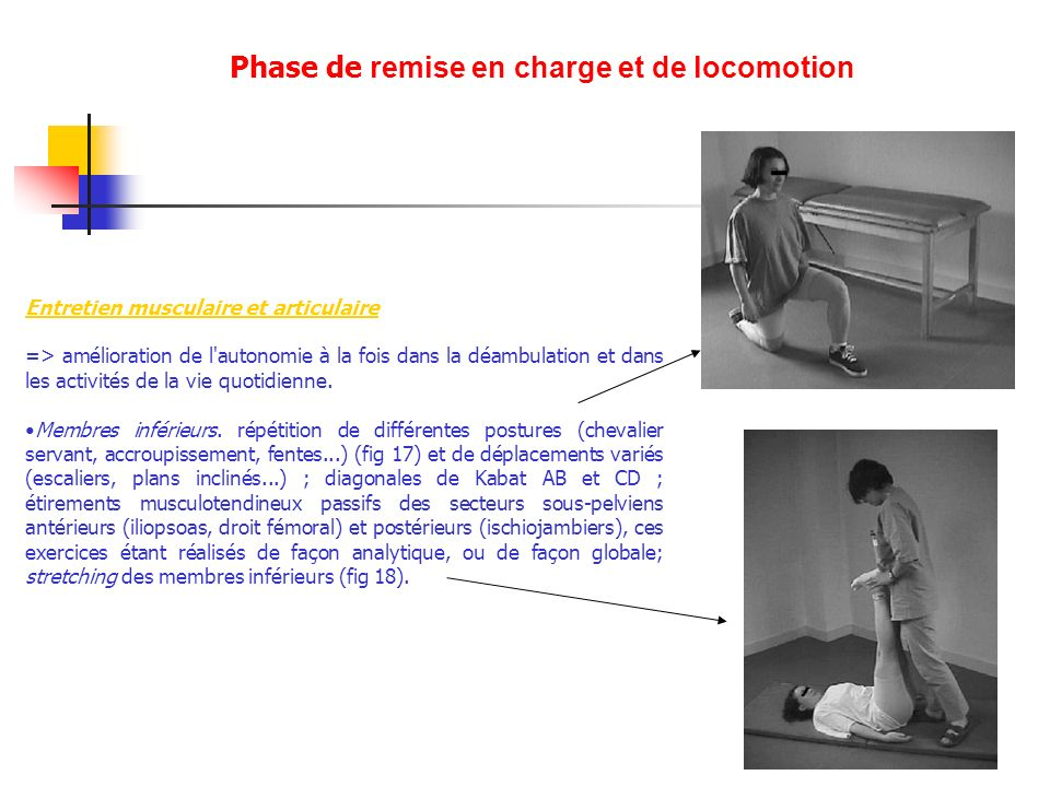 Phase de remise en charge et de locomotion