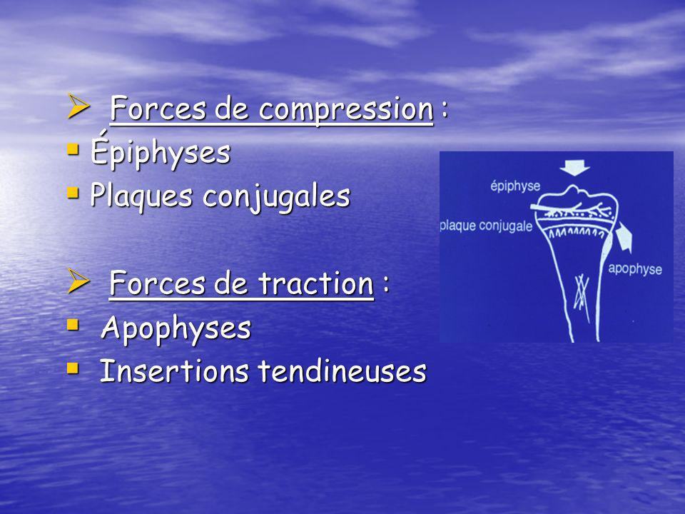 Forces de compression :