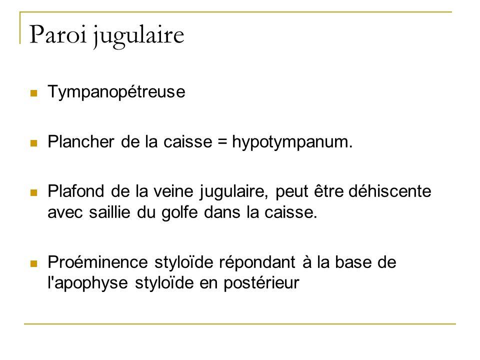 Paroi jugulaire Tympanopétreuse Plancher de la caisse = hypotympanum.