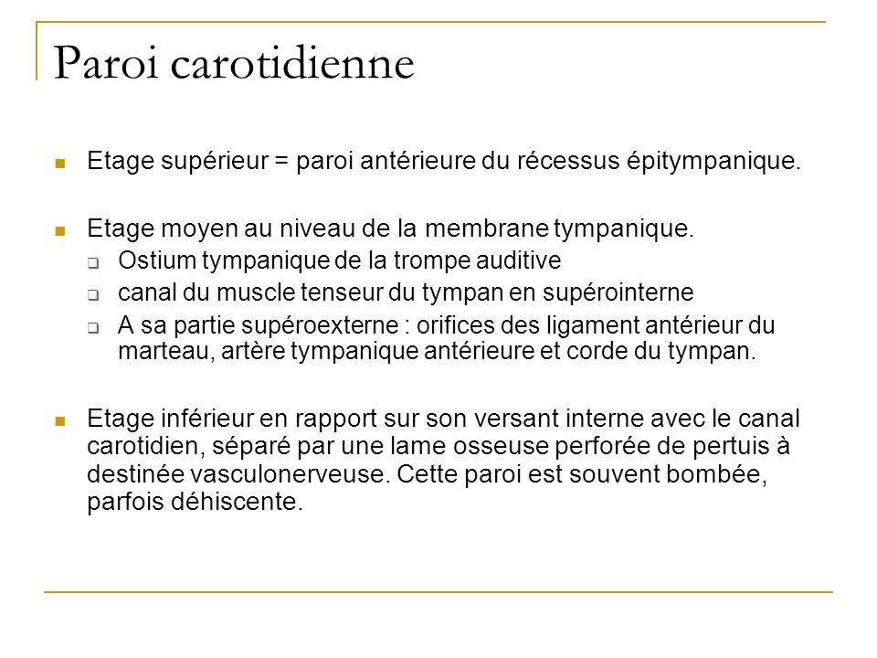 Paroi carotidienne Etage supérieur = paroi antérieure du récessus épitympanique. Etage moyen au niveau de la membrane tympanique.