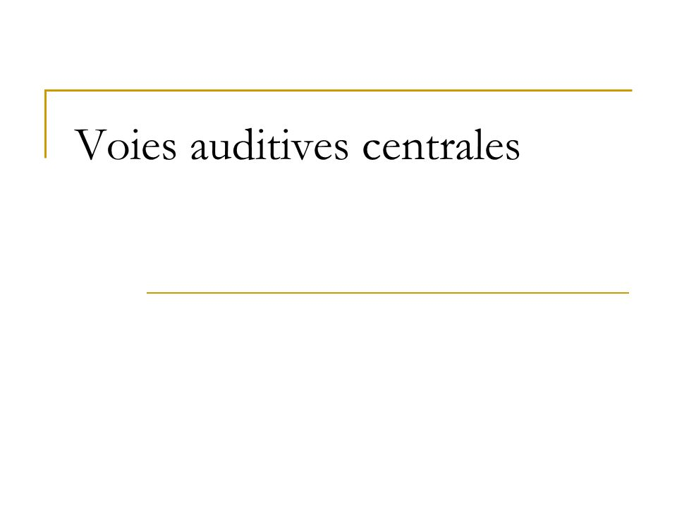 Voies auditives centrales