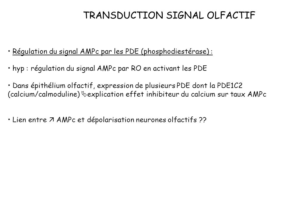 TRANSDUCTION SIGNAL OLFACTIF