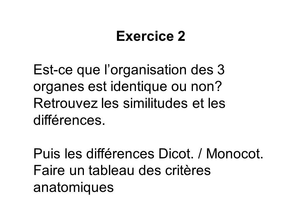 Exercice 2 Est-ce que l'organisation des 3 organes est identique ou non Retrouvez les similitudes et les différences.