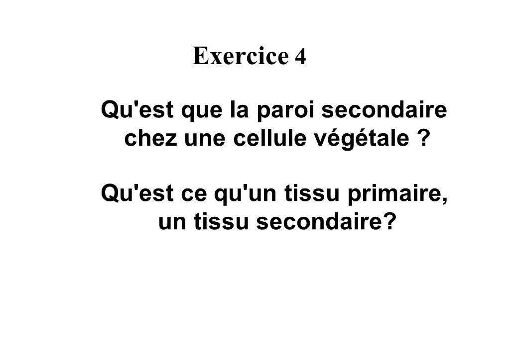 Exercice 4 Qu est que la paroi secondaire chez une cellule végétale