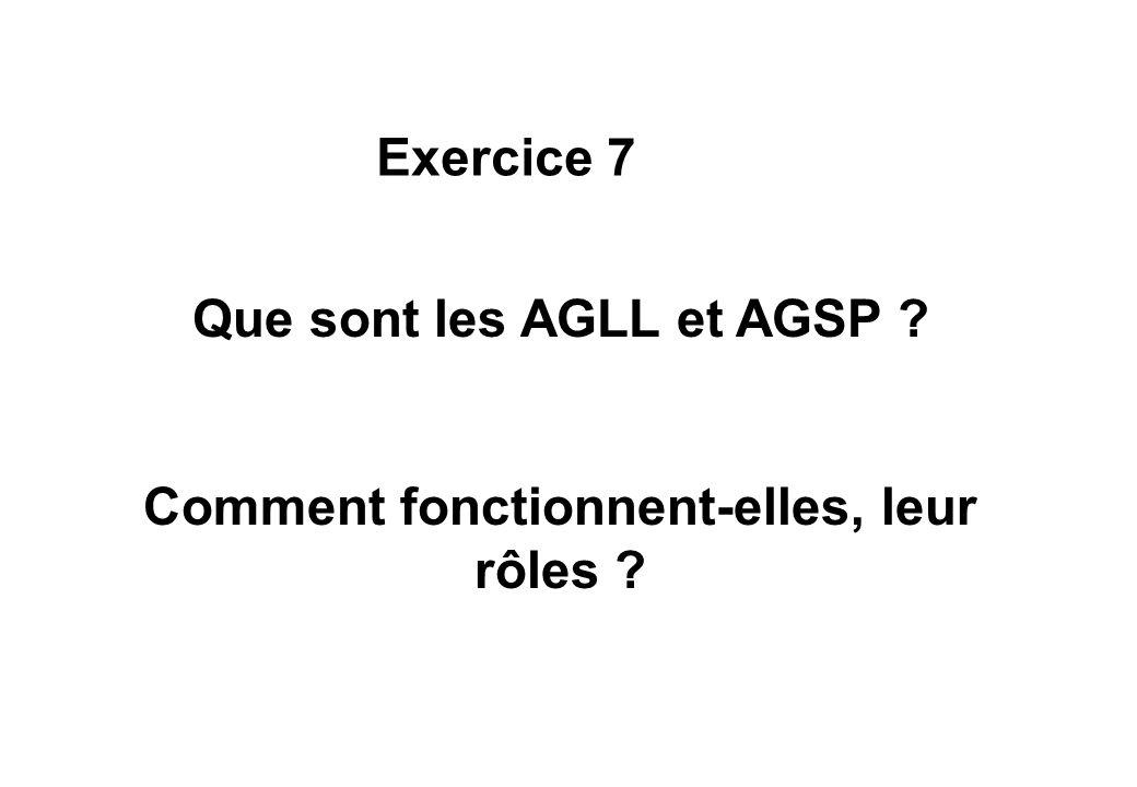 Que sont les AGLL et AGSP Comment fonctionnent-elles, leur rôles