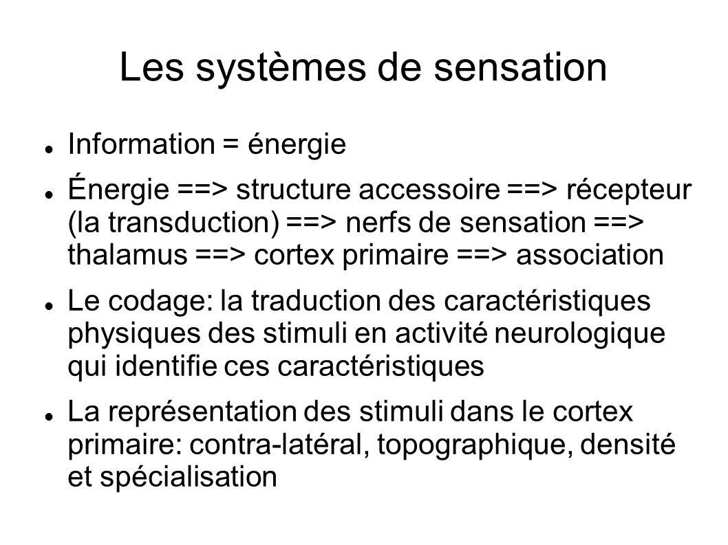 Les systèmes de sensation
