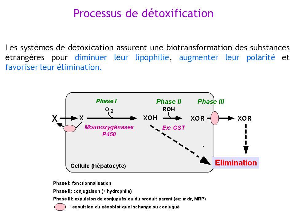 Processus de détoxification