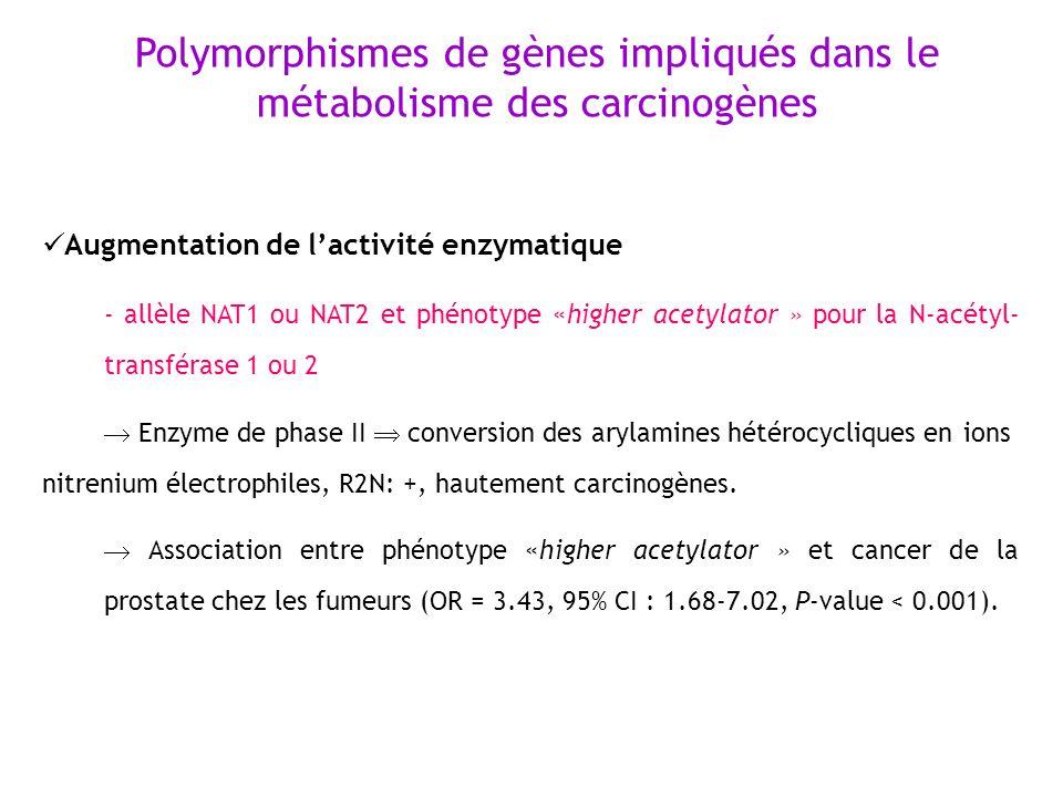 Polymorphismes de gènes impliqués dans le métabolisme des carcinogènes