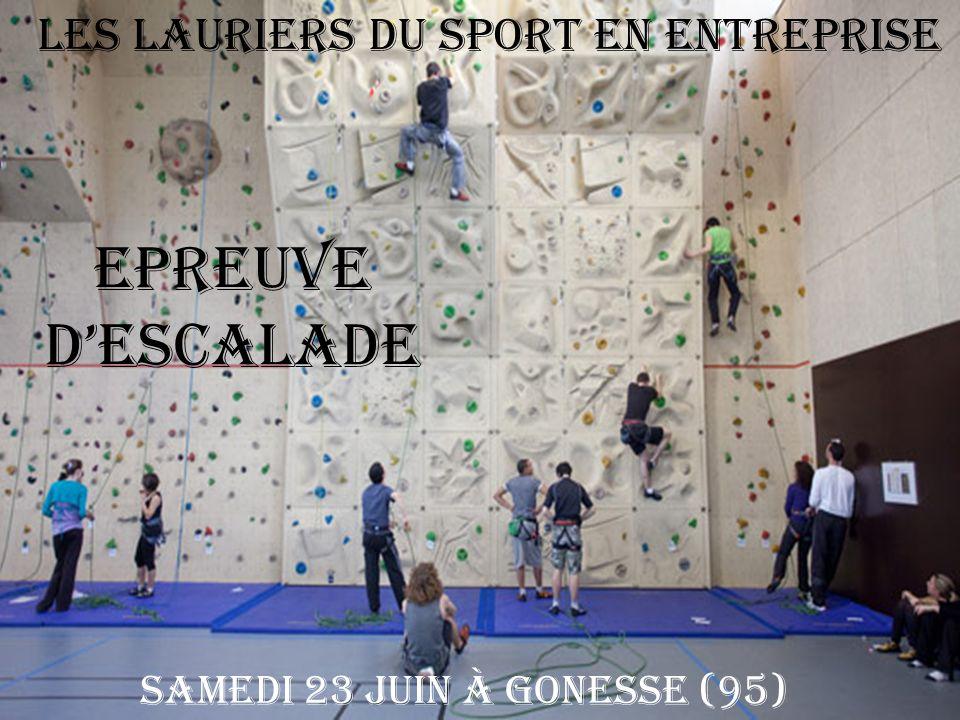 Epreuve d'ESCALADE Les Lauriers du Sport en Entreprise