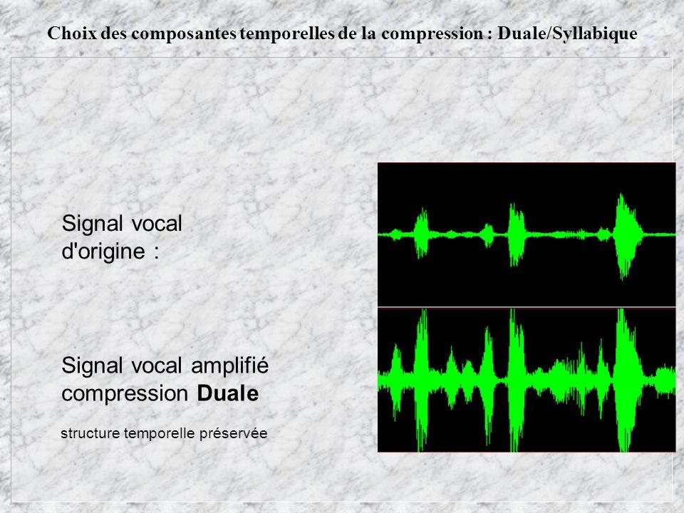 Choix des composantes temporelles de la compression : Duale/Syllabique