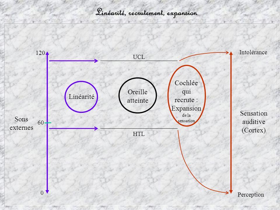 Linéarité, recrutement, expansion