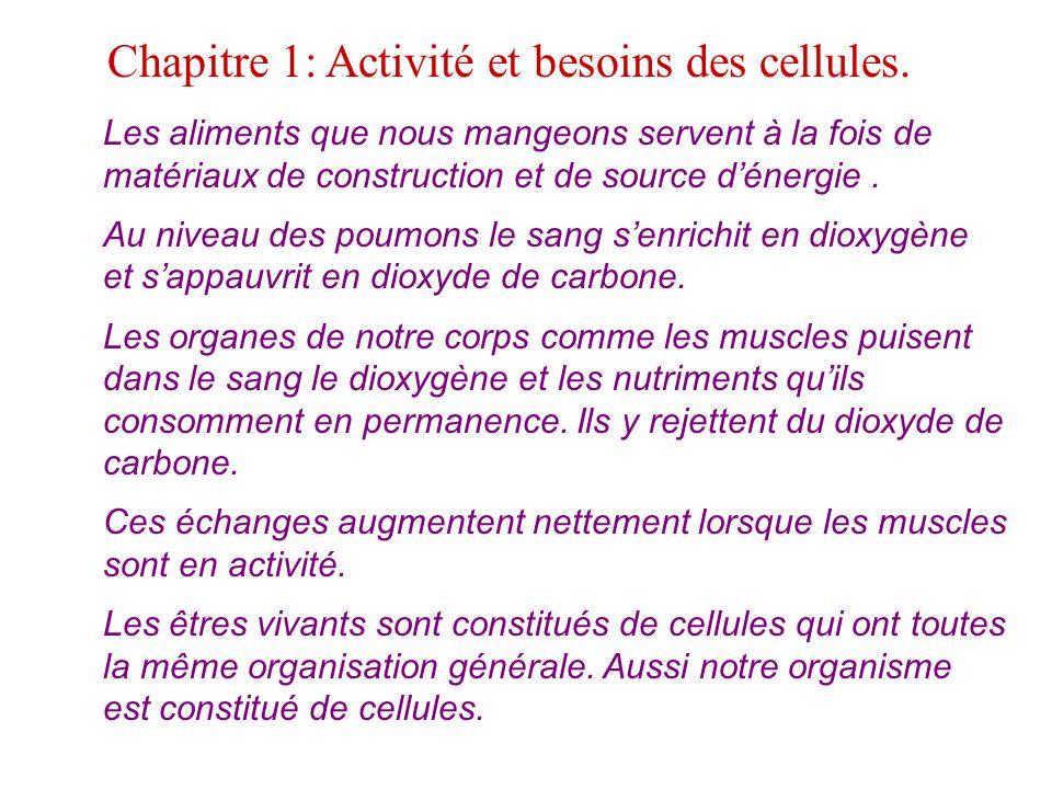 Chapitre 1: Activité et besoins des cellules.