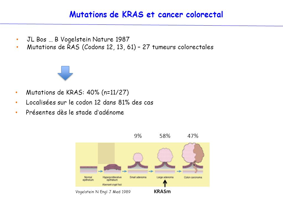 Mutations de KRAS et cancer colorectal