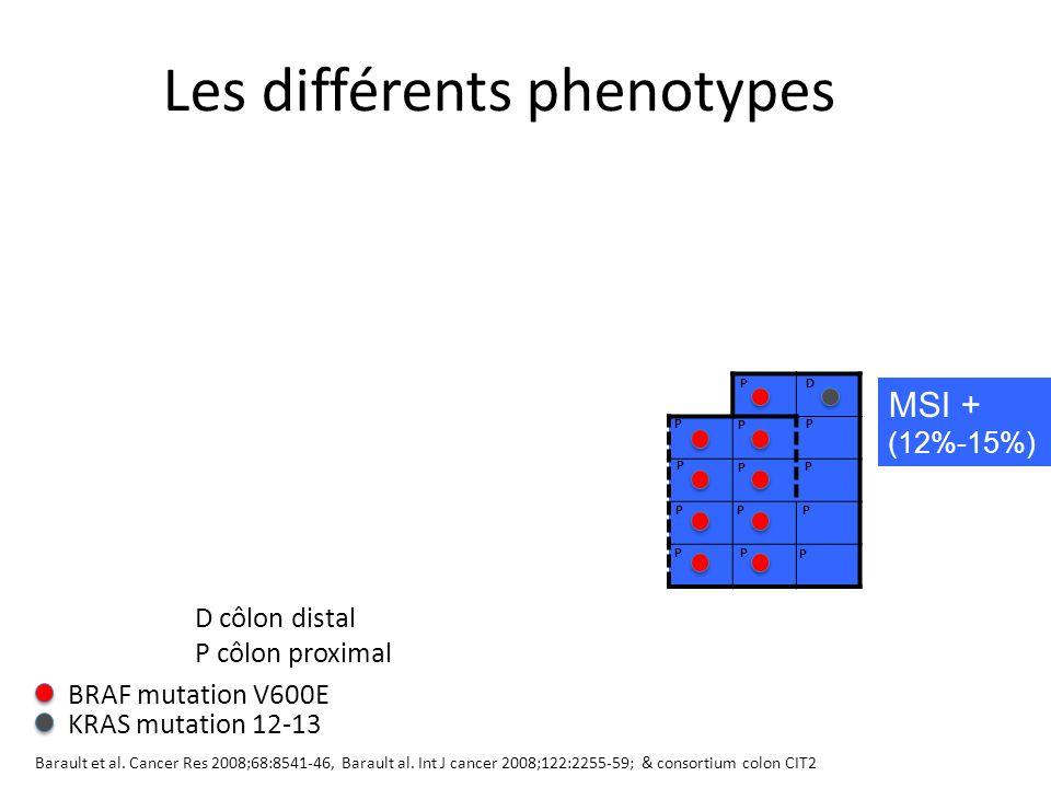 Les différents phenotypes