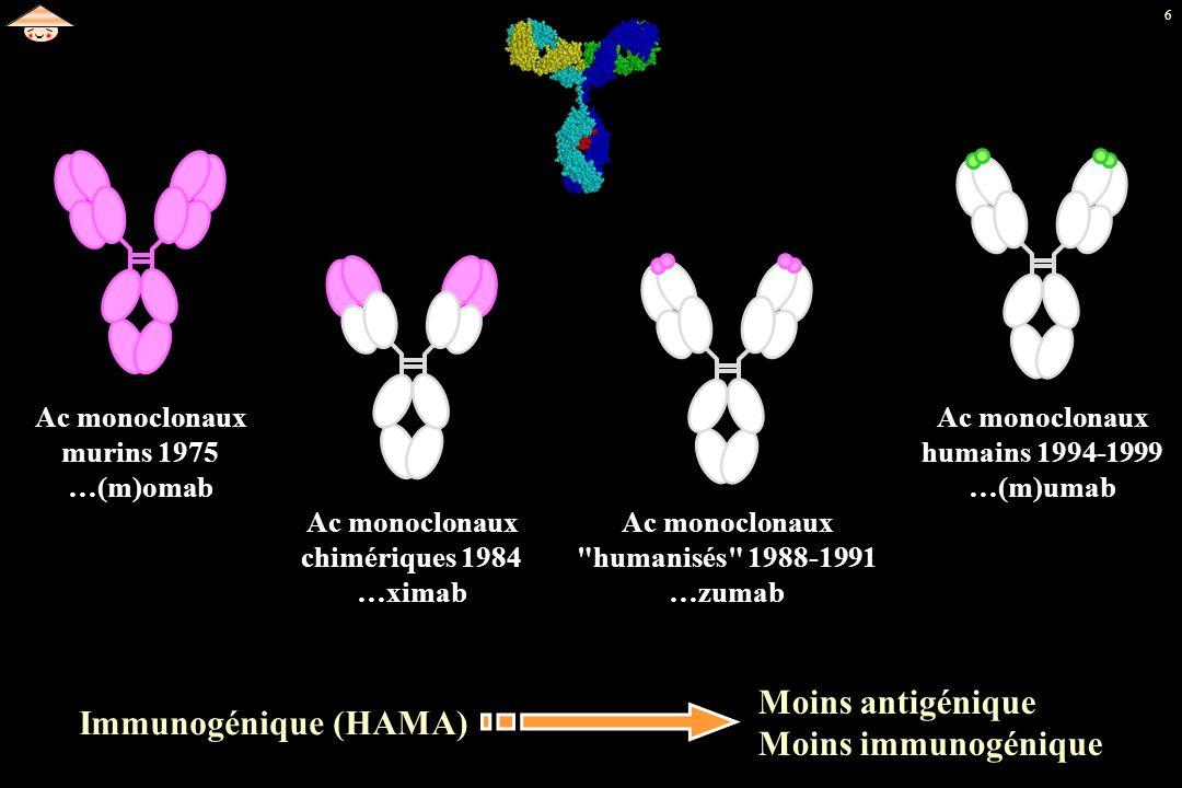 Moins antigénique Moins immunogénique Immunogénique (HAMA)