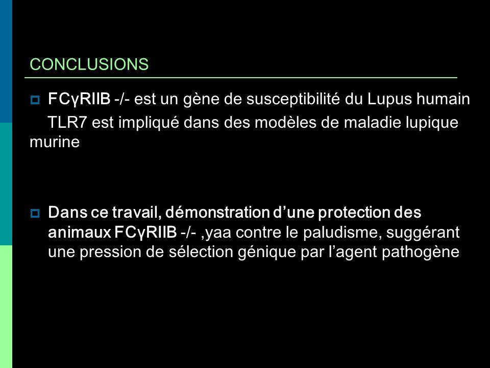 CONCLUSIONS FCγRIIB -/- est un gène de susceptibilité du Lupus humain. TLR7 est impliqué dans des modèles de maladie lupique murine.