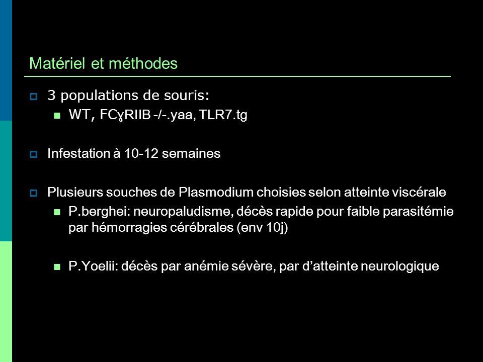 Matériel et méthodes 3 populations de souris: