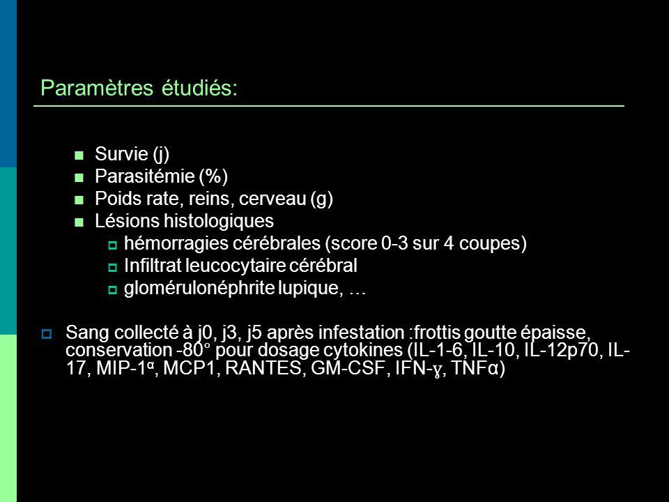 Paramètres étudiés: Survie (j) Parasitémie (%)