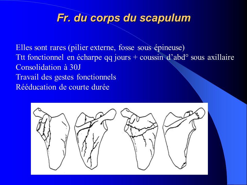 Fr. du corps du scapulum Elles sont rares (pilier externe, fosse sous épineuse) Ttt fonctionnel en écharpe qq jours + coussin d'abd° sous axillaire.