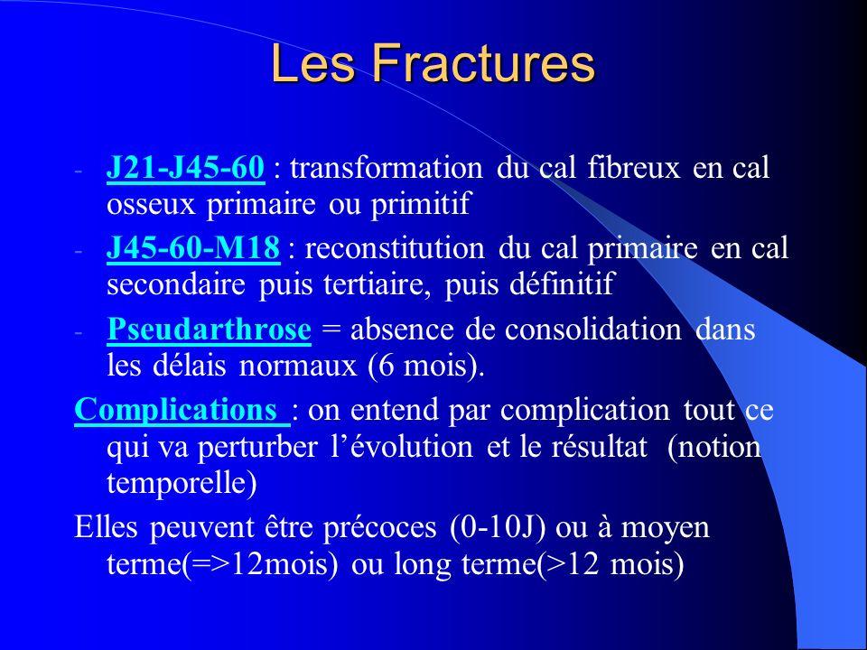 Les Fractures J21-J45-60 : transformation du cal fibreux en cal osseux primaire ou primitif.