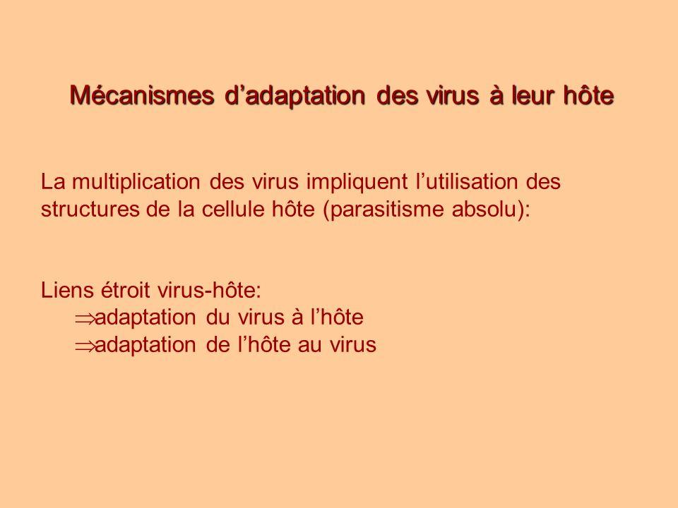 Mécanismes d'adaptation des virus à leur hôte