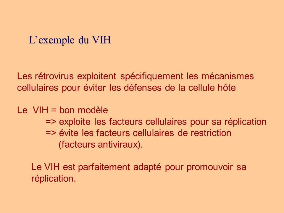 L'exemple du VIH Les rétrovirus exploitent spécifiquement les mécanismes cellulaires pour éviter les défenses de la cellule hôte.