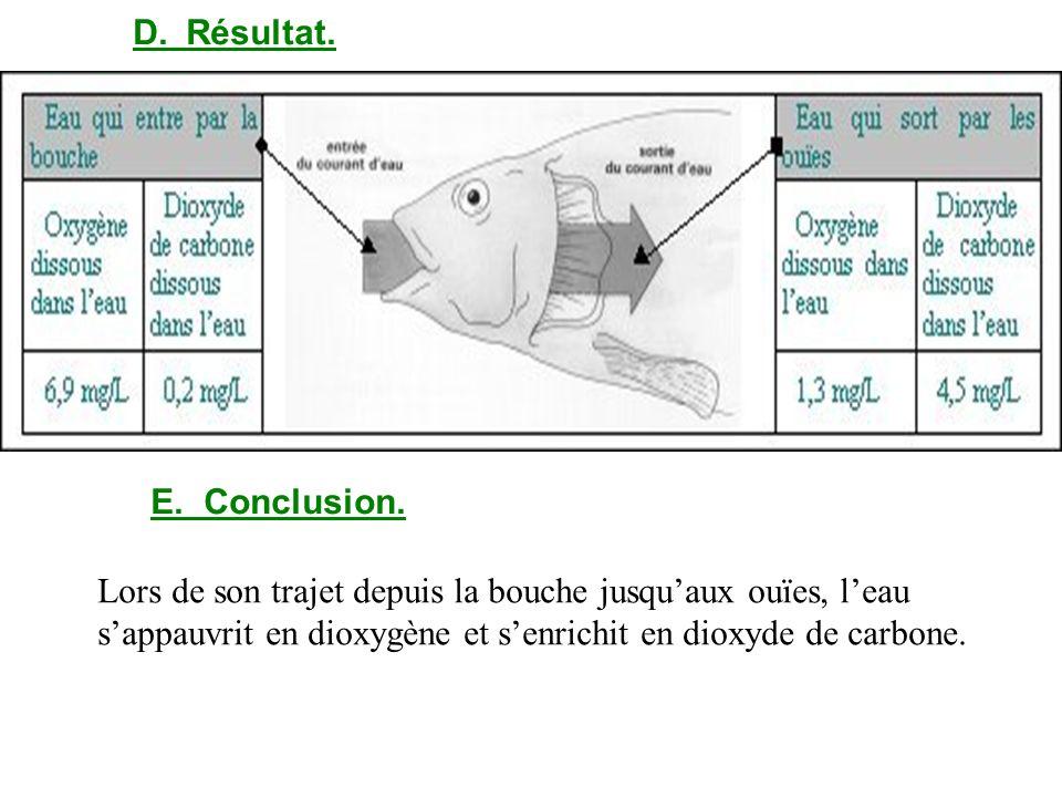 D. Résultat.E. Conclusion.