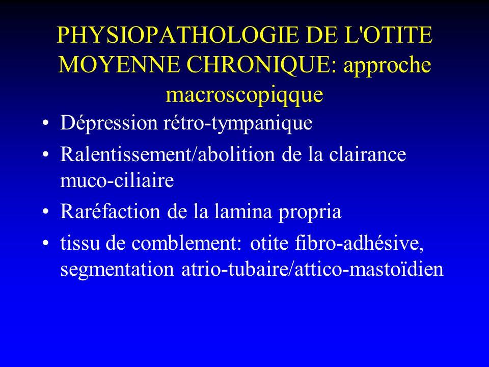 PHYSIOPATHOLOGIE DE L OTITE MOYENNE CHRONIQUE: approche macroscopiqque