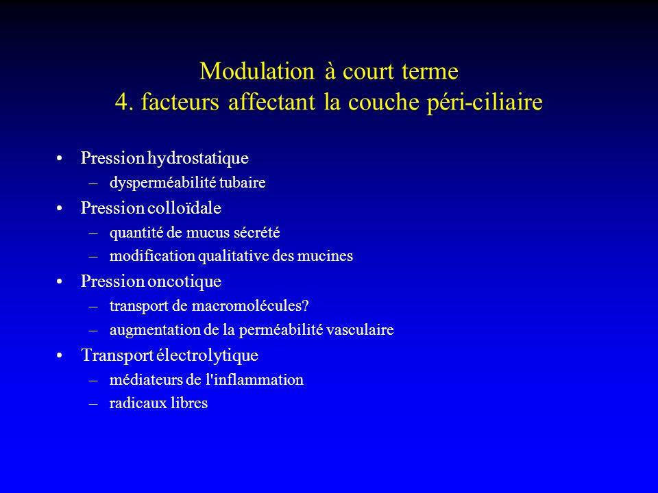 Modulation à court terme 4. facteurs affectant la couche péri-ciliaire