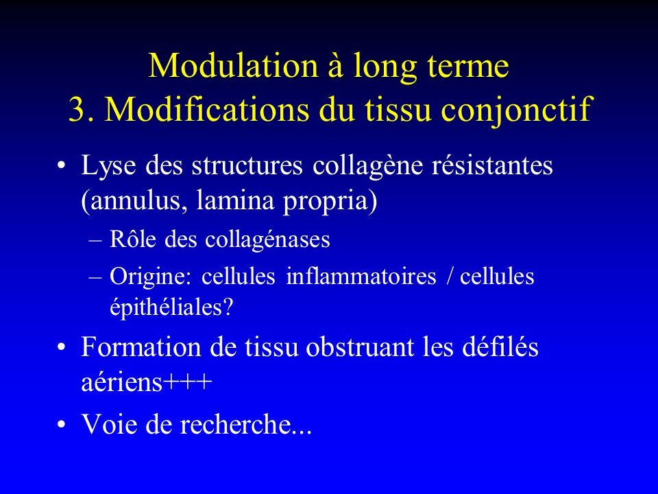 Modulation à long terme 3. Modifications du tissu conjonctif