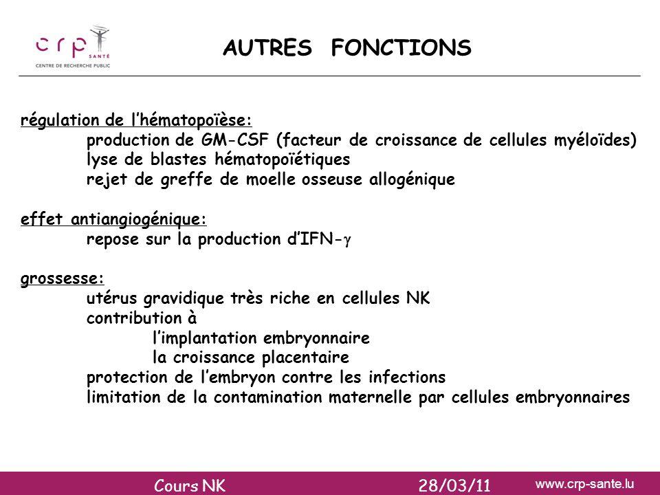 AUTRES FONCTIONS régulation de l'hématopoïèse: