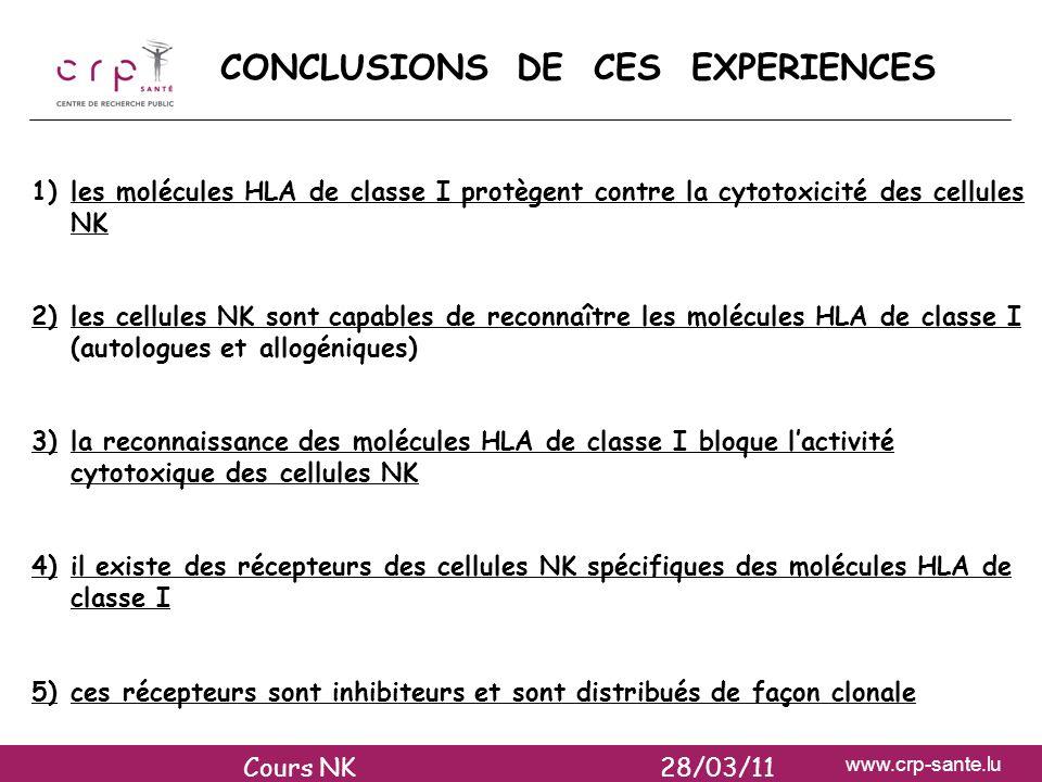CONCLUSIONS DE CES EXPERIENCES