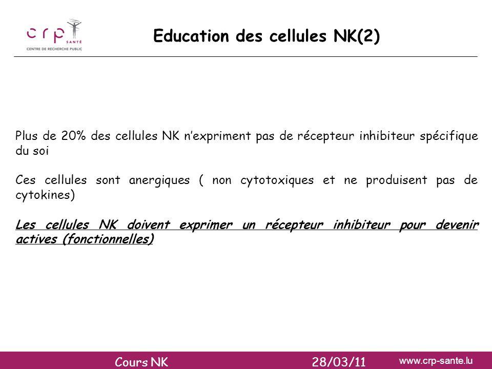 Education des cellules NK(2)