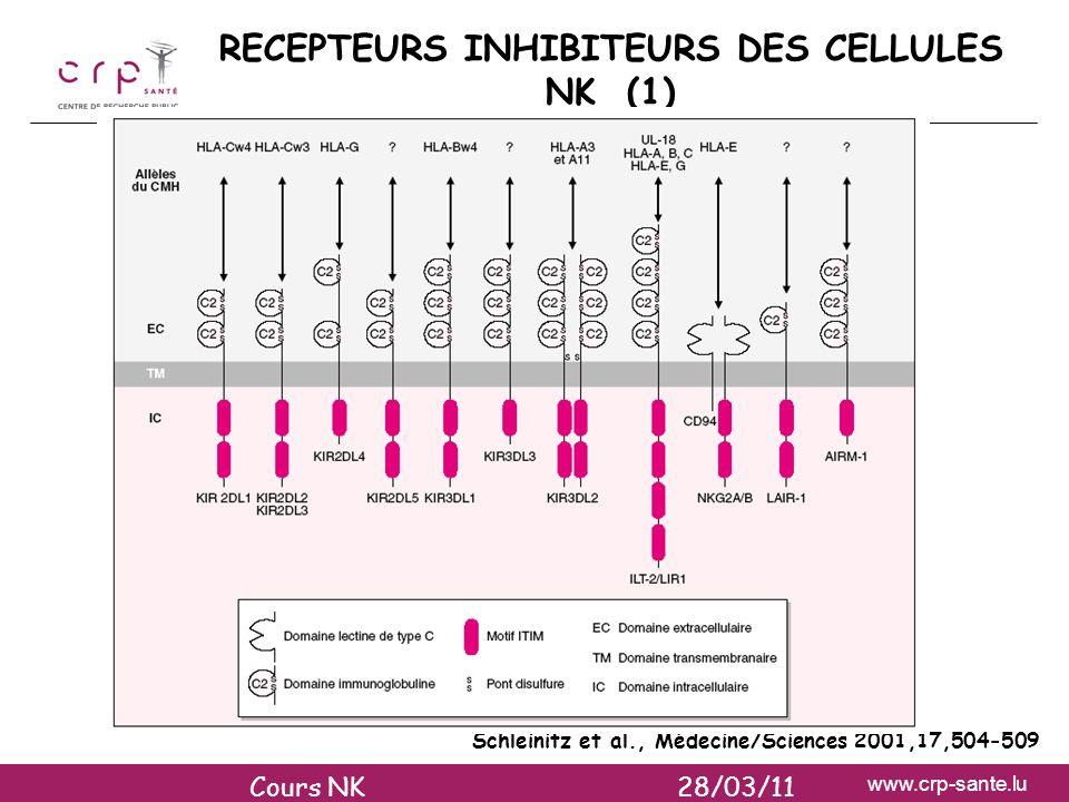 RECEPTEURS INHIBITEURS DES CELLULES NK (1)