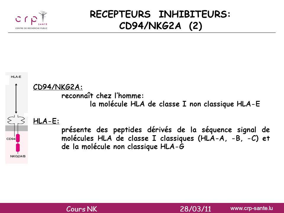 RECEPTEURS INHIBITEURS: CD94/NKG2A (2)