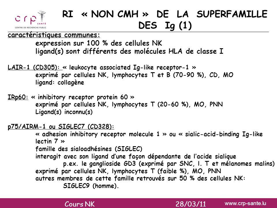 RI « NON CMH » DE LA SUPERFAMILLE DES Ig (1)