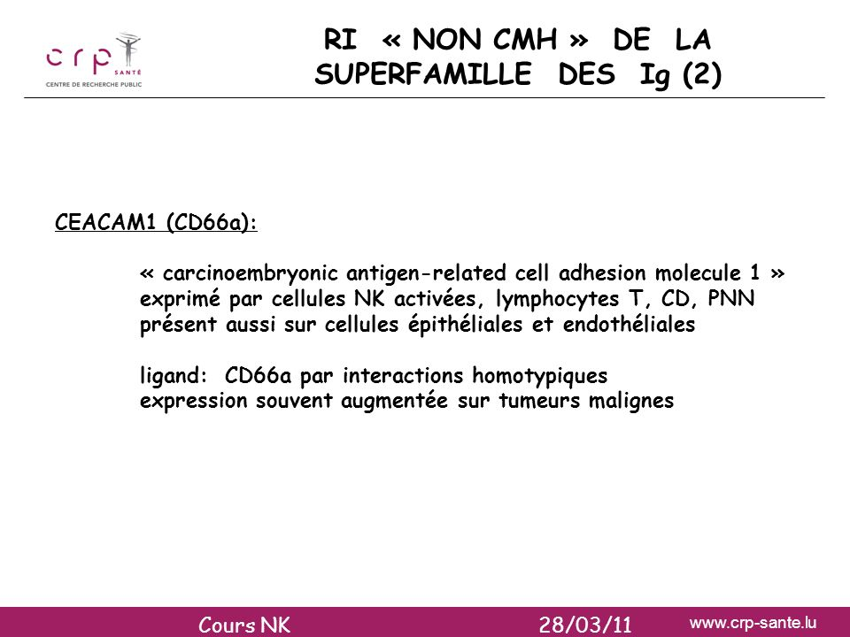 RI « NON CMH » DE LA SUPERFAMILLE DES Ig (2)
