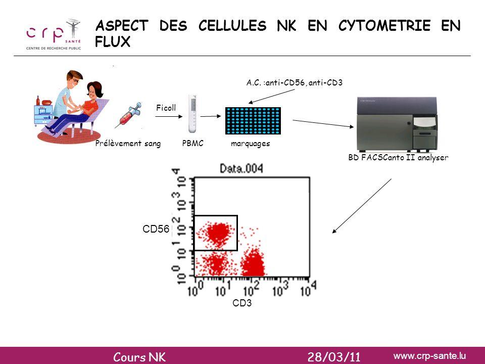 ASPECT DES CELLULES NK EN CYTOMETRIE EN FLUX