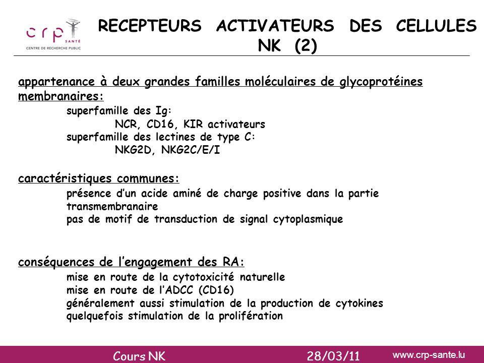 RECEPTEURS ACTIVATEURS DES CELLULES NK (2)