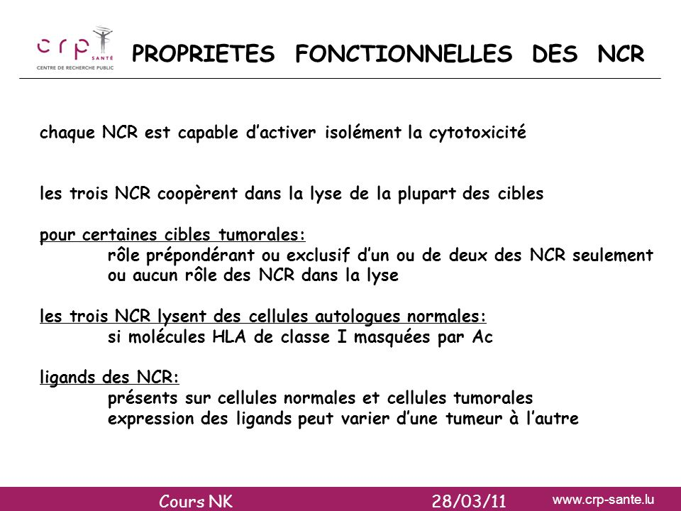 PROPRIETES FONCTIONNELLES DES NCR